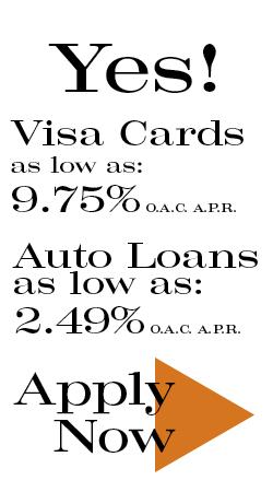 Usa payday loans cicero photo 6